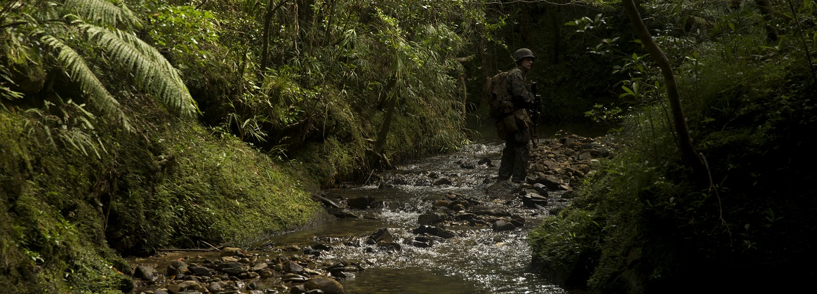 A Marine with Echo Company, Battalion Landing Team, 2nd Battalion, 5th Marines, maneuvers through the jungle during a land navigation course at Jungle Warfare Training Center, Camp Gonsalves, Okinawa, Japan, July 30, 2018. The Marines trained at JWTC to prepare for an upcoming patrol of the Indo-Pacific region as the Ground Combat Element for the 31st Marine Expeditionary Unit. The 31st MEU, the Marine Corps' only continuously forward-deployed MEU, provides a flexible force ready to perform a wide-range of military operations.
